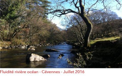 image-nidra-riviere-ocean